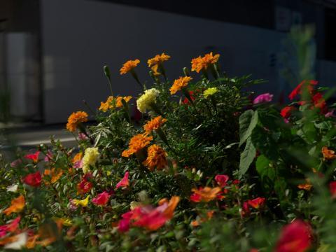 2011_0914AQ.jpg