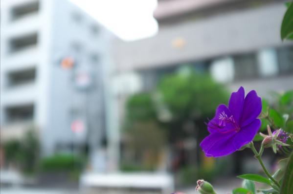 2011_1014AQ.jpg