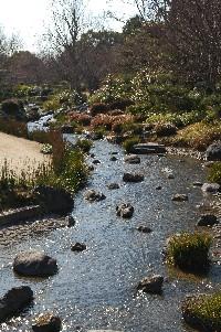 2010大仙公園2