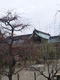 結城神社2010.2.10