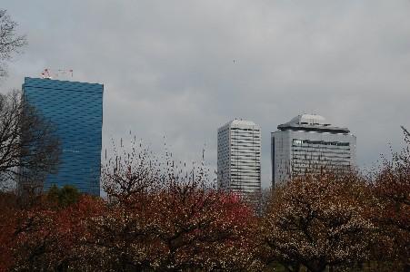 2010.2.16大阪城11