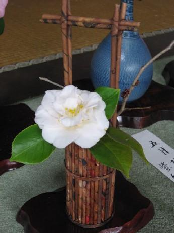 2010浄安寺7