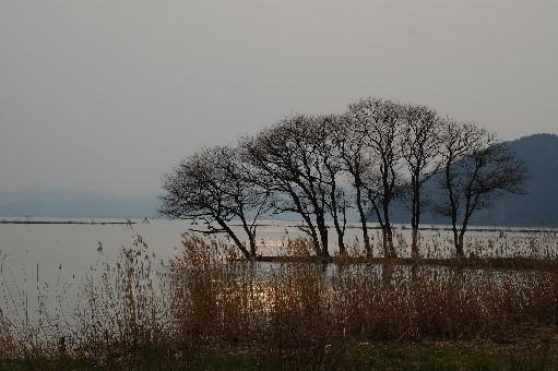 2010.3.27尾上8