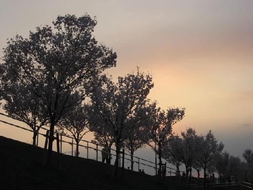2010.3.28狭山池6