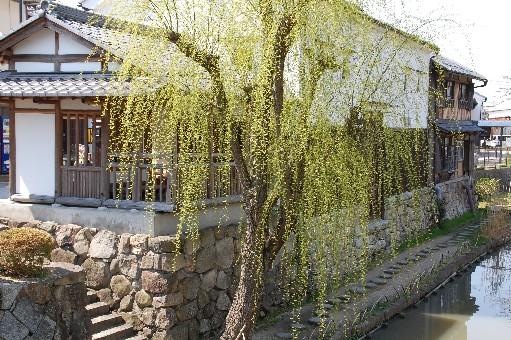 2010.3.17近江八幡8