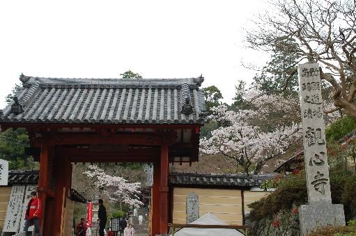 2010.4.3観心寺1