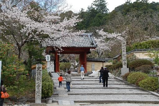 2010.4.3観心寺8