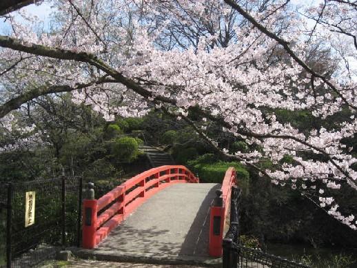 2010.4.4水間公園1