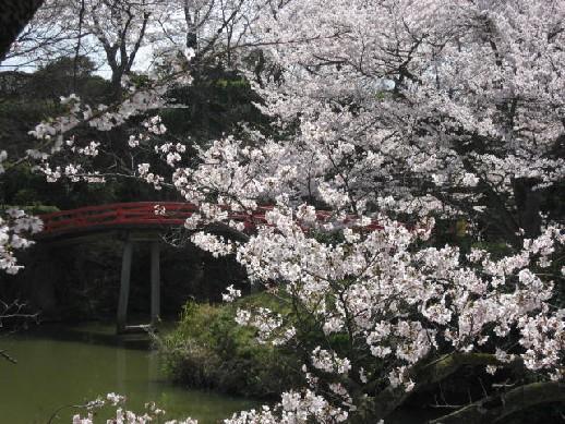 2010.4.4水間公園3