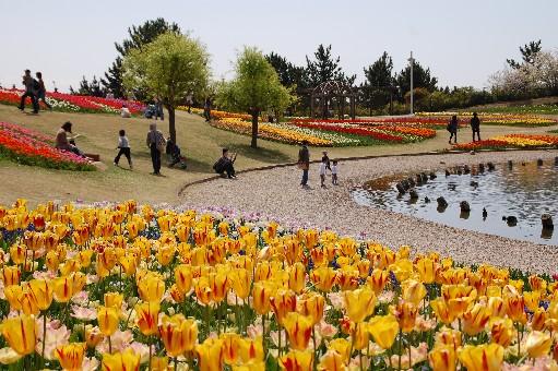 2010.4.10明石海峡公園1