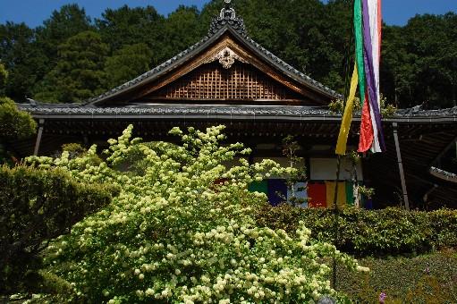 2010.4.29船宿寺7