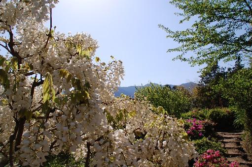 2010.4.29船宿寺17