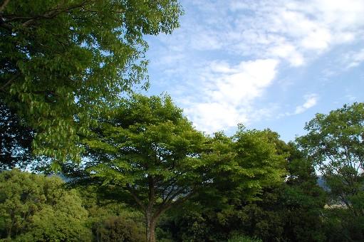 2010.5.9明日香3