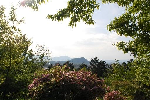 2010.5.9明日香8