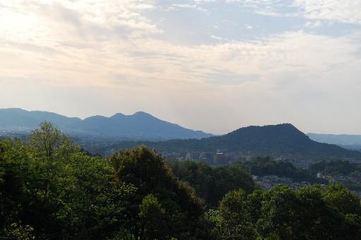 2010.5.9明日香9