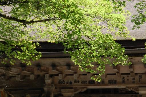 2010.7.18金剛峯寺2