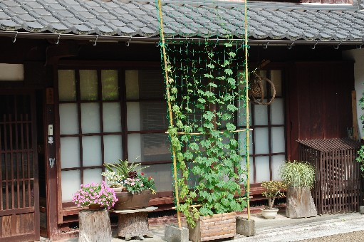 2010.7.31熊川宿2