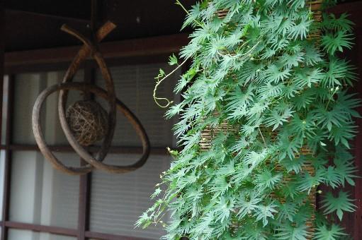 2010.7.31熊川宿3