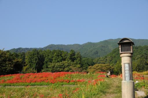 2010.10.2九品寺6