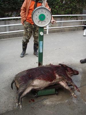 20091220共猟