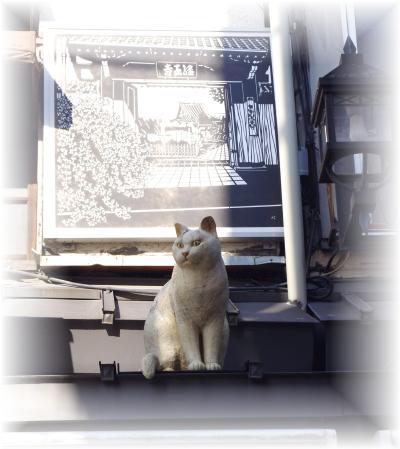 cat-yanaka-3.jpg