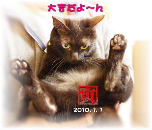 2010年もジジ団子!