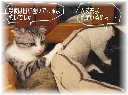 お姉ちゃん起きてましゅか?
