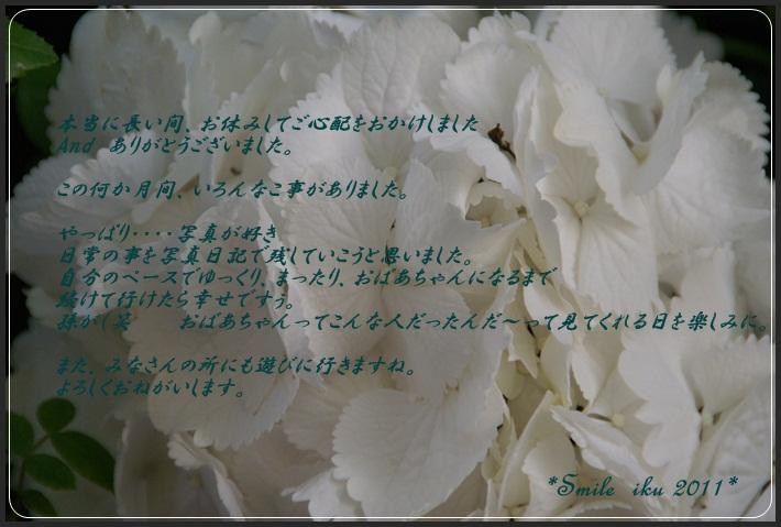 2011夏100