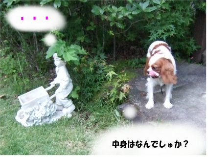 karizawa11