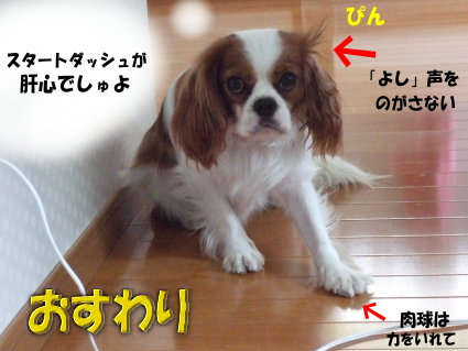 ダッシュの方法4