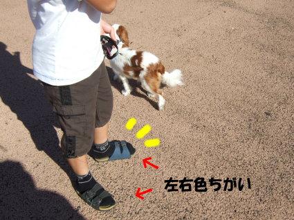 karizawa5