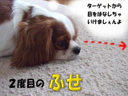 ダッシュの方法5
