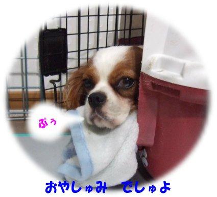 台風と悪臭5