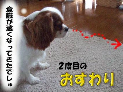 ダッシュの方法6