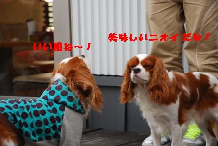 うん!いい風だねぇ~!