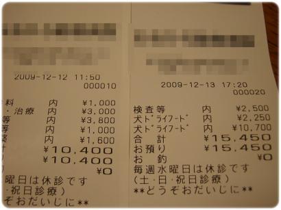 1_20091215180350.jpg