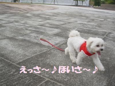 蟆冗伐螳カ蜀咏悄鬢ィ+1240_convert_20090925002115