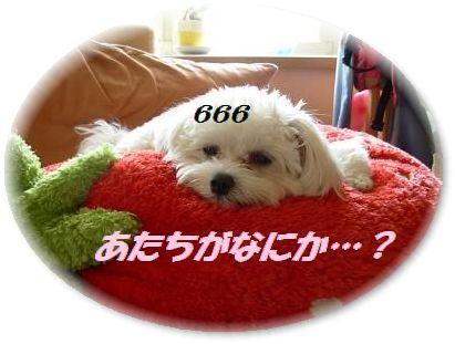 蟆冗伐螳カ蜀咏悄鬢ィ+1657_convert_20091009215016