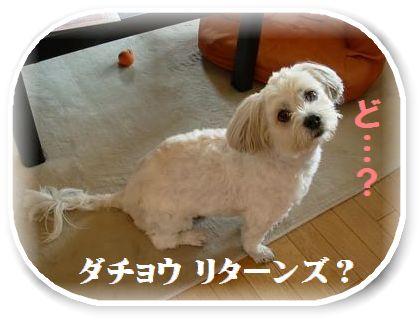 蟆冗伐螳カ蜀咏悄鬢ィ+164_convert_20091024170131