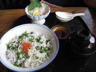 20091012_shirasu-tei.jpg