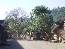 H21.7.1~インドネシア 196