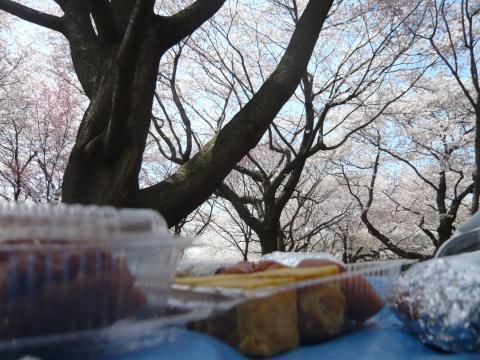 ゴチャゴチャ日記-4.23-3