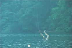 湖に浮かぶ足