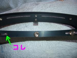 snap_chikuwabuta_2009113232156.jpg