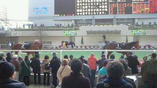 阪神競馬場091220