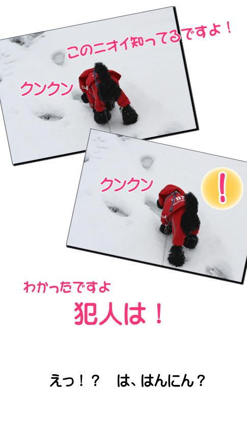 3-11雪の足跡2