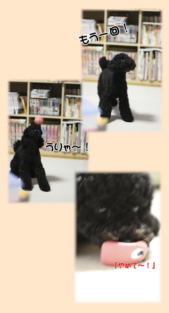 たまごちゃんキャッチ!2