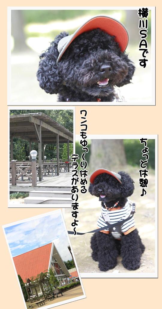 9-13横川SA