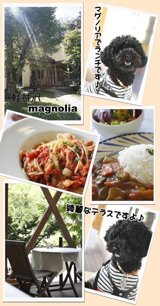 9-13軽井沢マグノリア