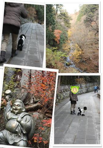 11-16榛名神社3